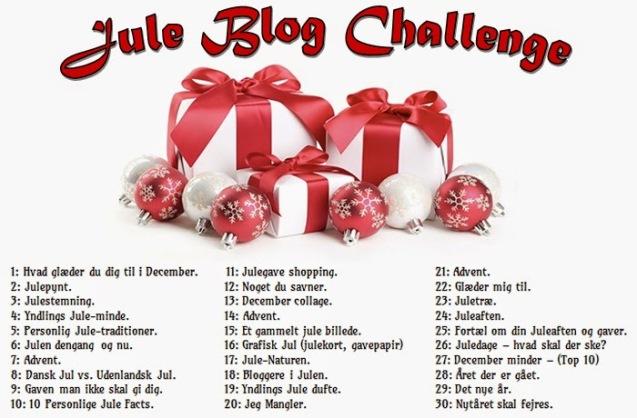 jeas-jule-blog-challenge2014-03